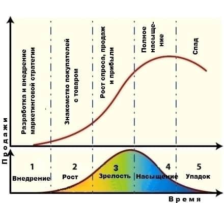 Фазы жизненного цикла товара